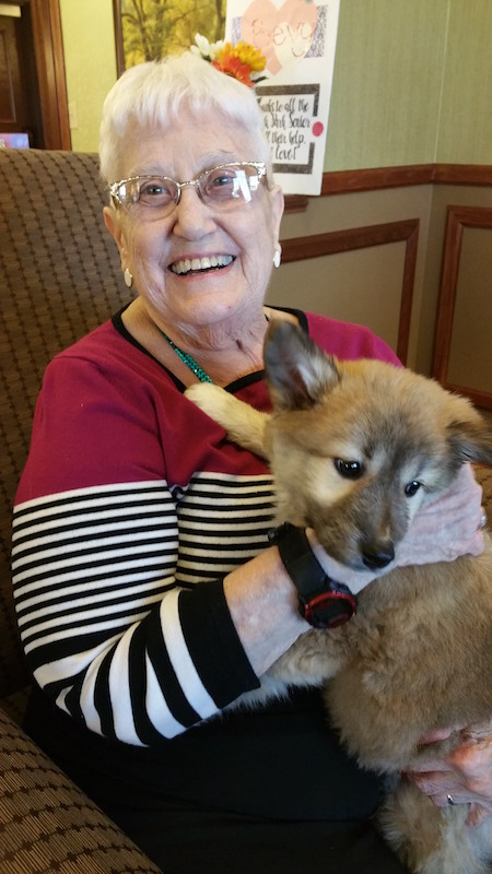 Rescue Pups, Coco's Heart Rescue, Oak Park Senior Living, Oak Park Heights, MN