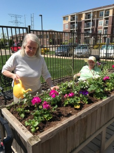Memory care residents planting flowers
